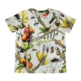 Raddix T-shirt, Living Nature -  - 1S19A223S1 - 1