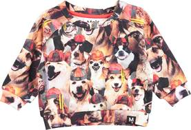 Dag sweater, Festive Dogs -  - moloss18a00111 - 1