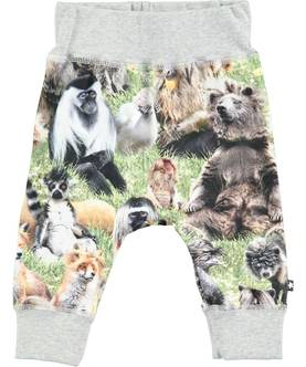 Sammy pants, Hairy Animals -  - moloss18a0073 - 1