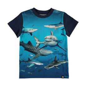Raymont T-shirt, Shark Smile -  - 1S19A224S1A - 1