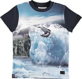 Raymont shirt, Melting Ice -  - 1W18A218L - 1
